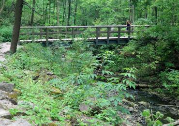 Hamilton Conservation Areas