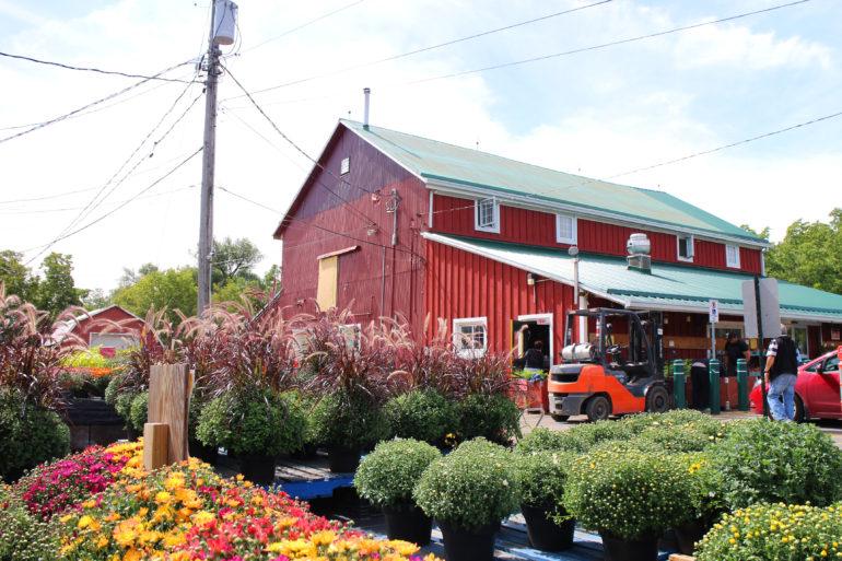 Bennett's Apples & Cider   Hamilton, Ontario   The Inlet Photo 3